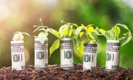 Nejzajímavější investiční obor budoucnosti