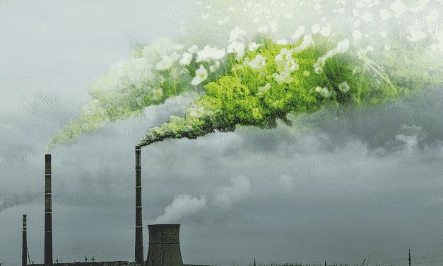 Stav přírody v Evropě se stále vážně zhoršuje, ukazuje poslední hodnocení