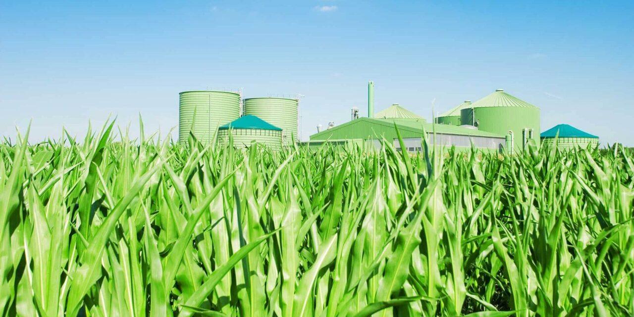 Potenciál biomasy pro rok 2021