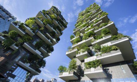 Fidelity: Uhlíkově neutrální bude do roku 2030 až čtvrtina firem