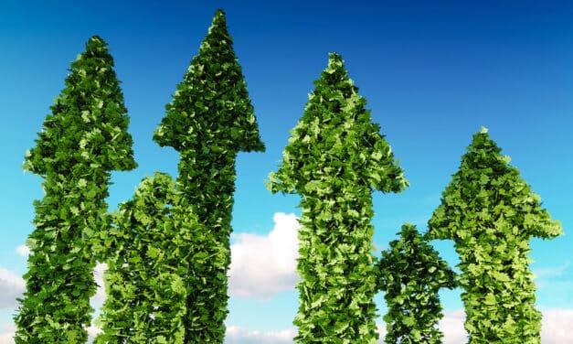 Analýza: Kvalita ESG a růst dividend firem korelují